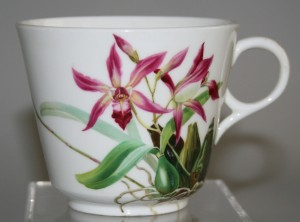 orchid tea cup